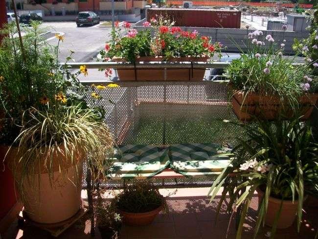 Consigli di giardinaggio: coltivare le piante in terrazzo