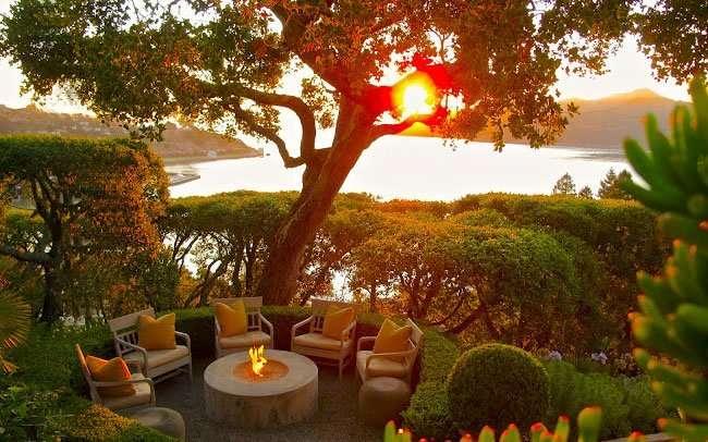 All ombra delle piante ornamentali gli alberi da giardino - Alberi sempreverdi da giardino ...