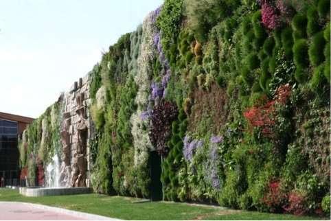 Scopriamo insieme il giardino verticale - Giardino verticale madrid ...